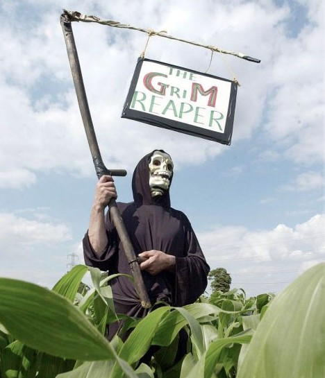 GM foods does have something of an image problem